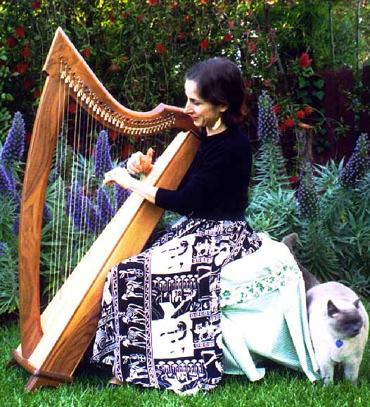LEVER HARP lessons