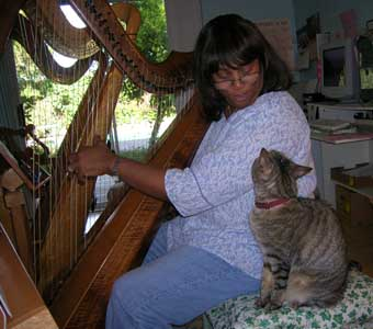 harp student with cat